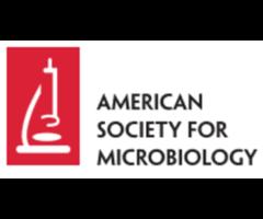 The Biomedical Engineering Society (BMES)